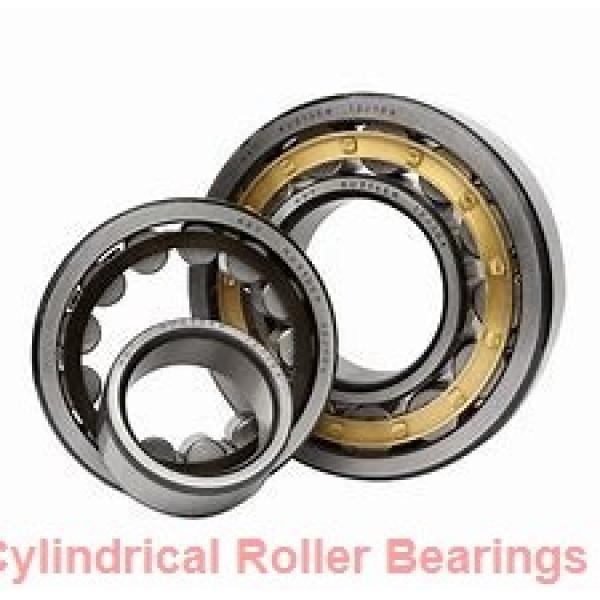 55 mm x 120 mm x 43 mm  NKE NJ2311-E-MPA cylindrical roller bearings #1 image